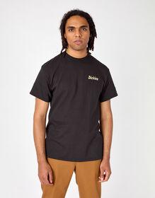 Dickies Skateboarding Split Graphic T-Shirt - Black (BK)